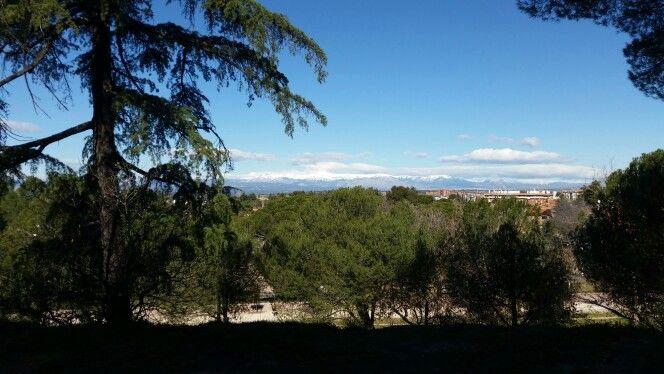 Parque Dehesa De La Villa Parques Villas Y Parques De Madrid