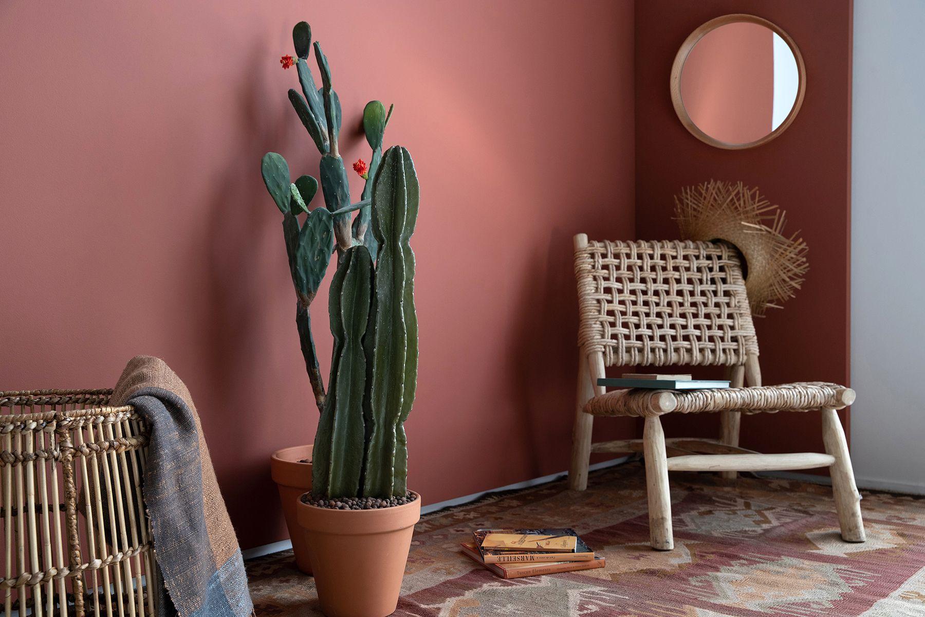 Teintes Flamant By Tollens 2020 En 2020 Peinture Interieur Maison Deco Entree Maison Couleur Terracotta