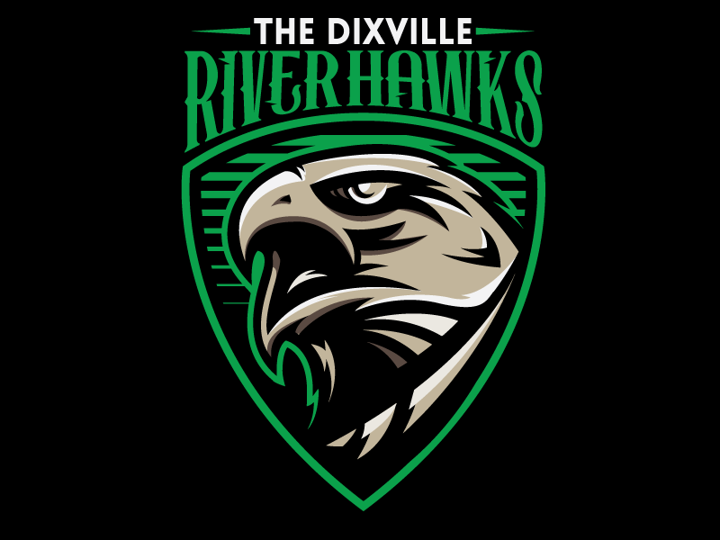 Hawks Sports Logo Design Game Logo Design Logo Design