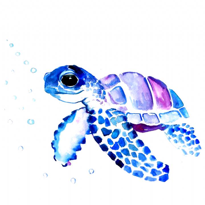 Sea Turtle And Jellyfish Acrylic Box By Davidwentworthart 4 X 4 X 3 Drawings Sea Turtle Art Turtle Painting Turtle Art