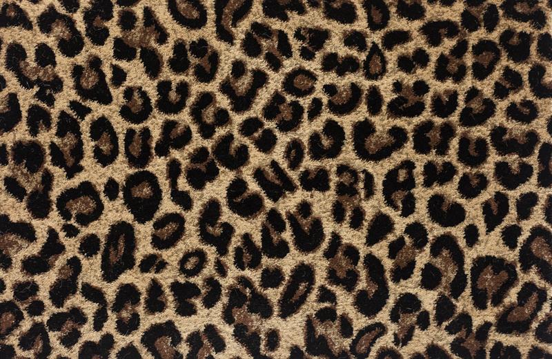 Kane Angora Peruvian Tiger Carpet As An Area Rug Love It Kane Carpet Rugs On Carpet Carpet