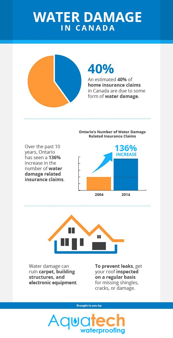 An Estimated 40 Of Home Insurance Claims In Canada Are Due To