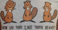 Opinion. all shaved beavers