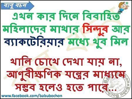 Bengali Lines