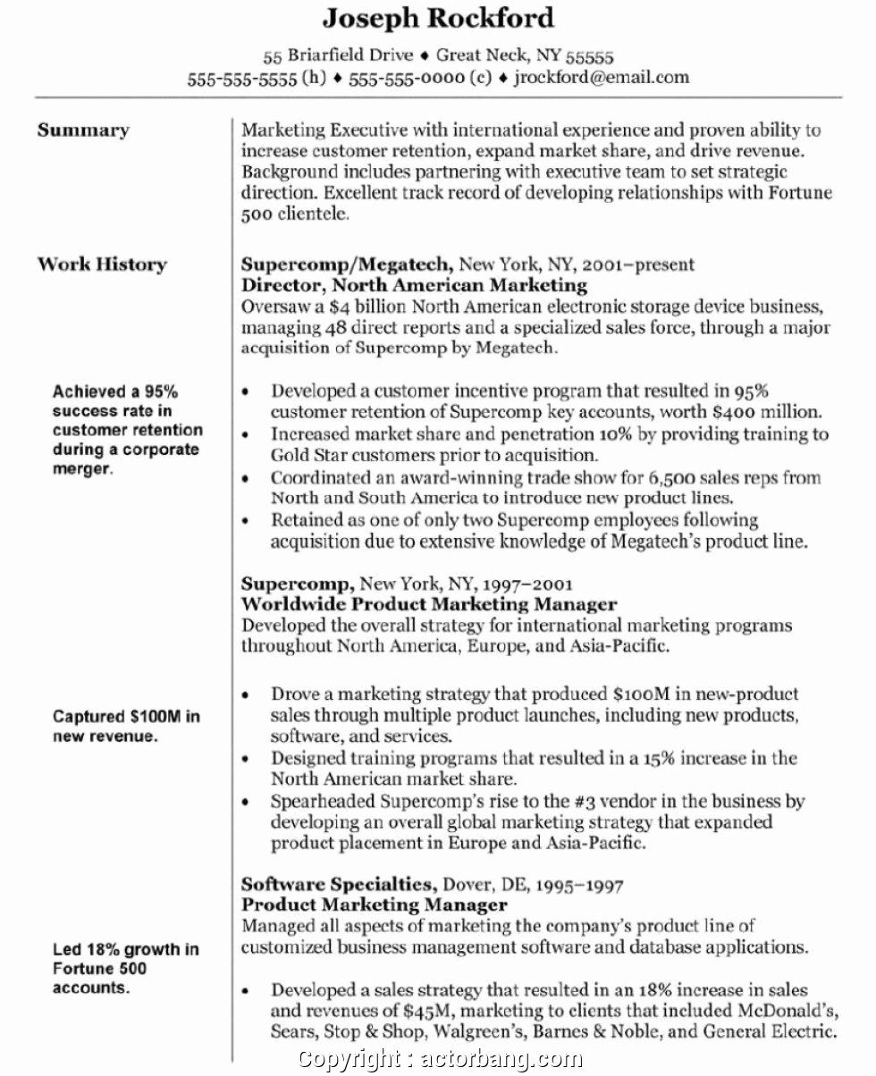 23 Marketing Resume Objective Examples in 2020 Marketing