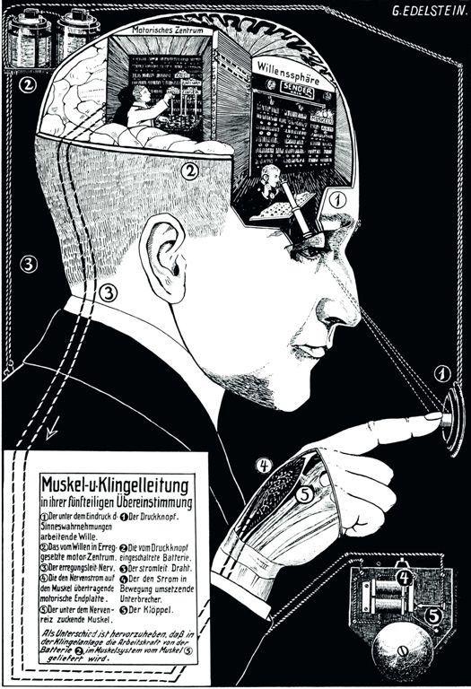 Fritz Kahn - Muskel- u. Klingelleitung in ihrer fünffachen ...