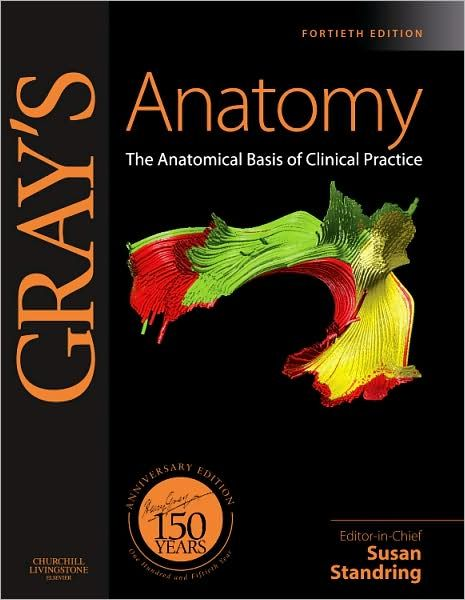 Download Grays Clinical Anatomy Pdf Free All Medical Stuff