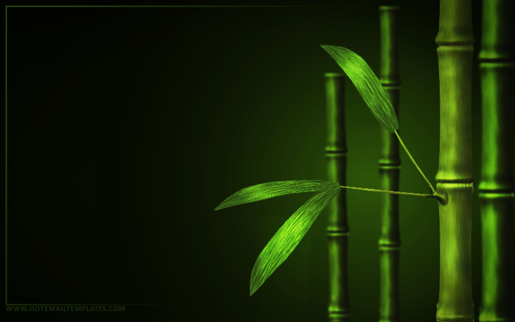 Green Nature Forest Bamboo 496