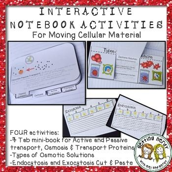Cell Transport   YouTube moreover 5 7  Cell Transport   Biology LibreTexts further Moving Cellular Material in addition 3 3  Eukaryotic Cells   Biology LibreTexts also How do things move across a cell memne   video    Khan Academy together with Osmosis and Diffusion   Science Interactive Notebook   Getting Nerdy as well Moving Cellular Material likewise Worksheet    parison of Memne Transport ANSWER KEY also MEMNE TRANSPORT also OpenStax  Biology Concepts   CH3  Cell Structure and Function   Top besides Moving Cellular Material as well Endocytosis and Exocytosis   Biology for Majors I likewise De posers   Lesson 3   Investigating Bread Molding   CarbonTIME further 3 1 The Cell Memne – Anatomy and Physiology in addition Moving Cellular Materials Pg   ppt video online download additionally CELL TRANSPORT WORKSHEET. on moving cellular materials worksheet answers