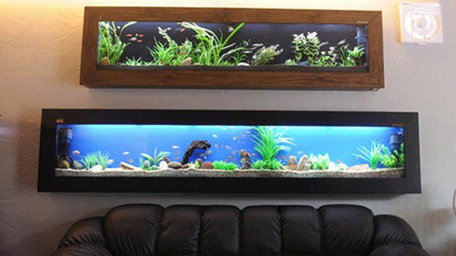 Systems Are Manufactures Of Fish Tank