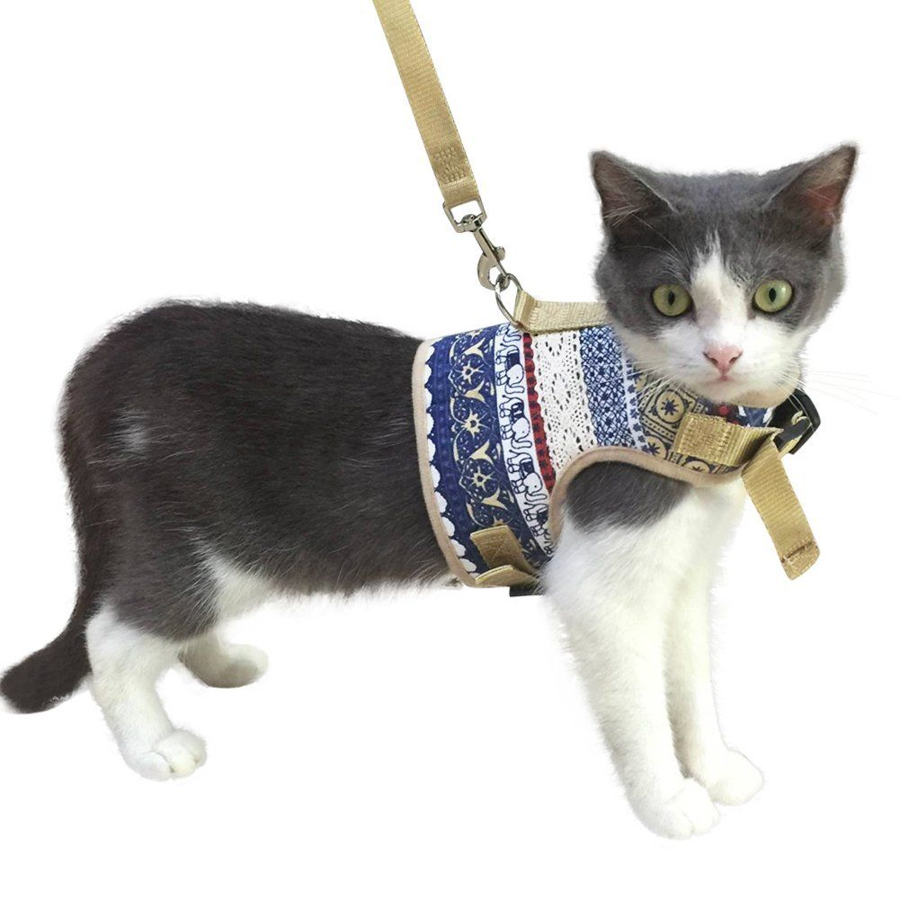 Kzhareen Escape Proof Cat Harness With Leash Set Adjustable Soft Mesh For Kitty Puppy Small Dogs Animals Very Nice Of Cat Harness Cat Collars Small Puppies
