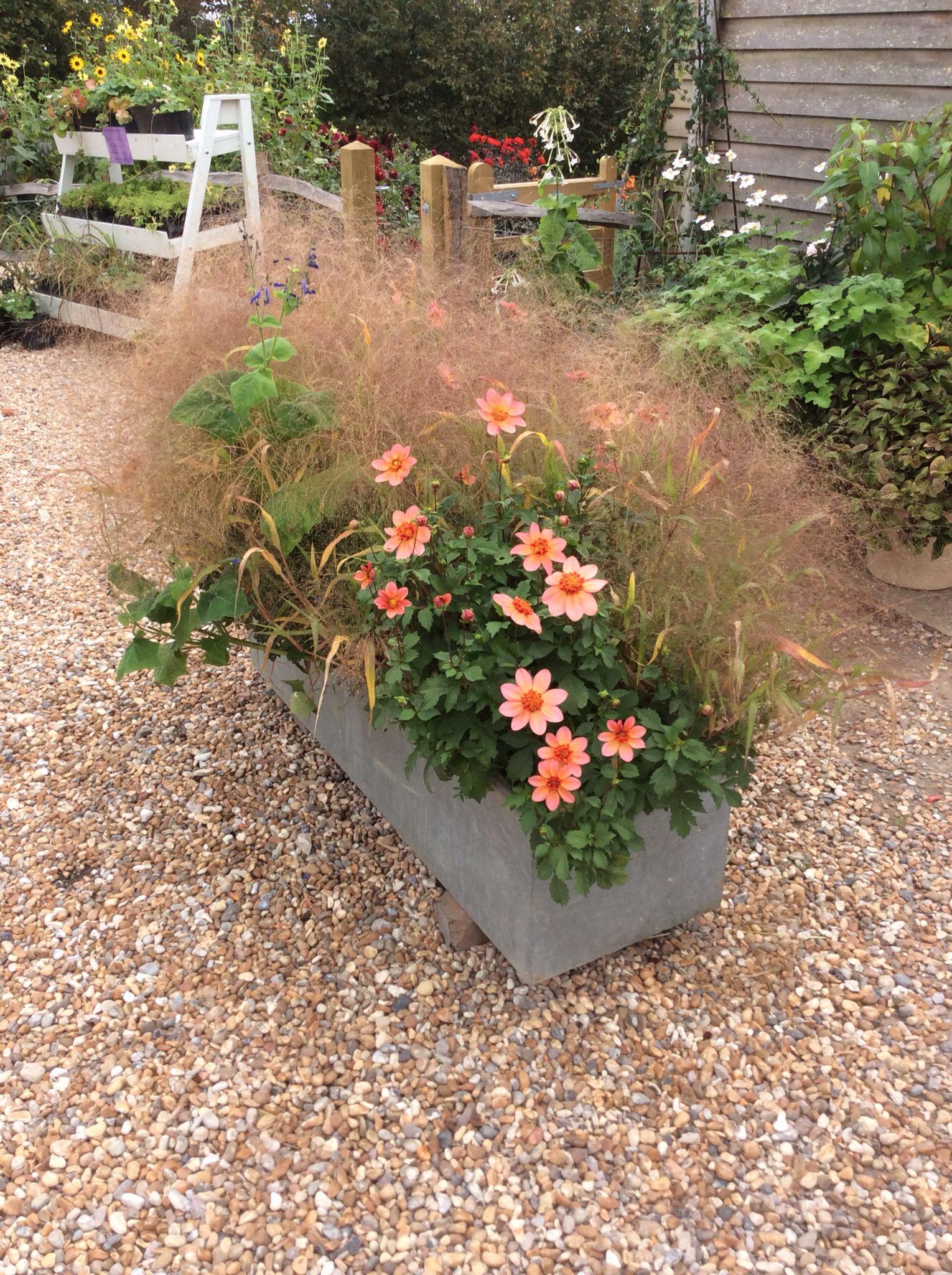 At Perch Hill (Sarah Raven\'s beautiful Garden): Isn\'t it lovely ...