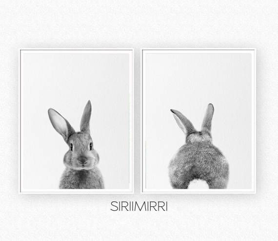 Rabbit print set baby animal print bunny print woodland
