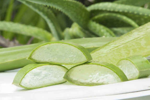 is aloe vera gel good for prostate