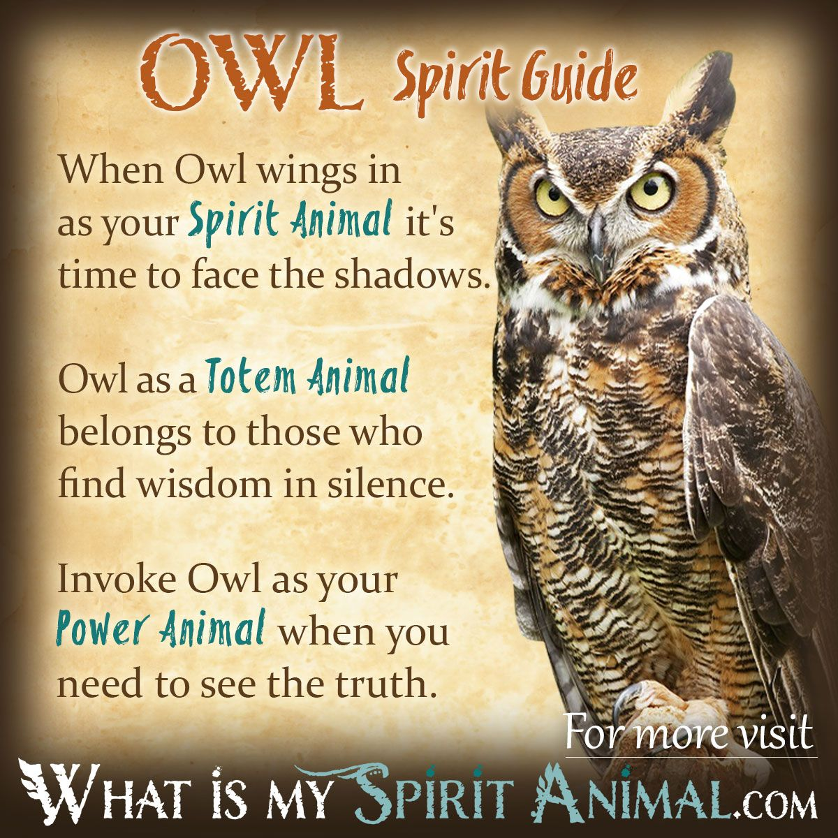 Owl symbolism meaning owl symbolism power animal and totems owl symbolism meaning biocorpaavc