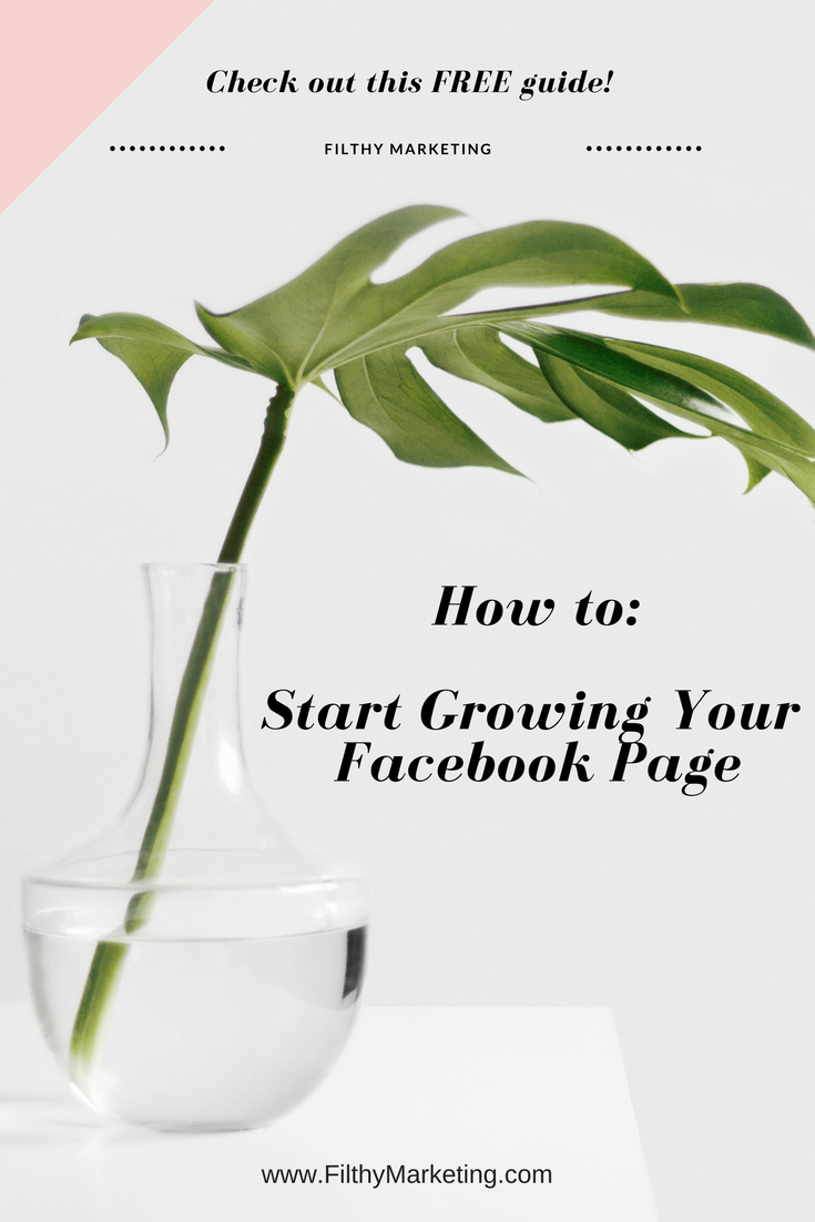 Struggling to grow your Facebook Page? This free guide will show you: -Why you need to be focusing on a Facebook presence - 4 steps to take today to boost your page, WITHOUT Spending a Dime! - 6 Fundamentals of a killer Facebook Ad - AND EVEN MORE! This guide will help you build your facebook audience, improve engagement and reach statistics, and grow your following organically.