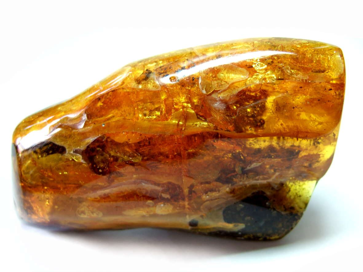 Baltic Amber / Poland | Stones and crystals, Amber, Minerals