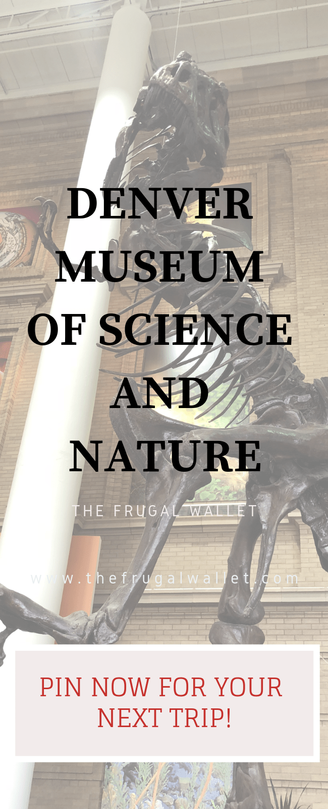 Comprehensive Guide To The Denver Museum Of Nature And Science