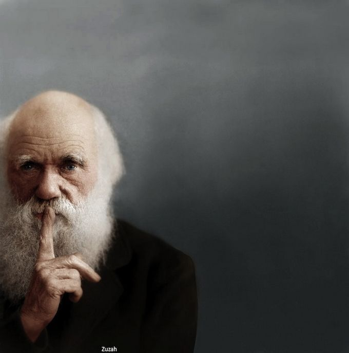 Charles Darwin, photo by by Yousuf Karsh, retouched by Mads Madsen ...