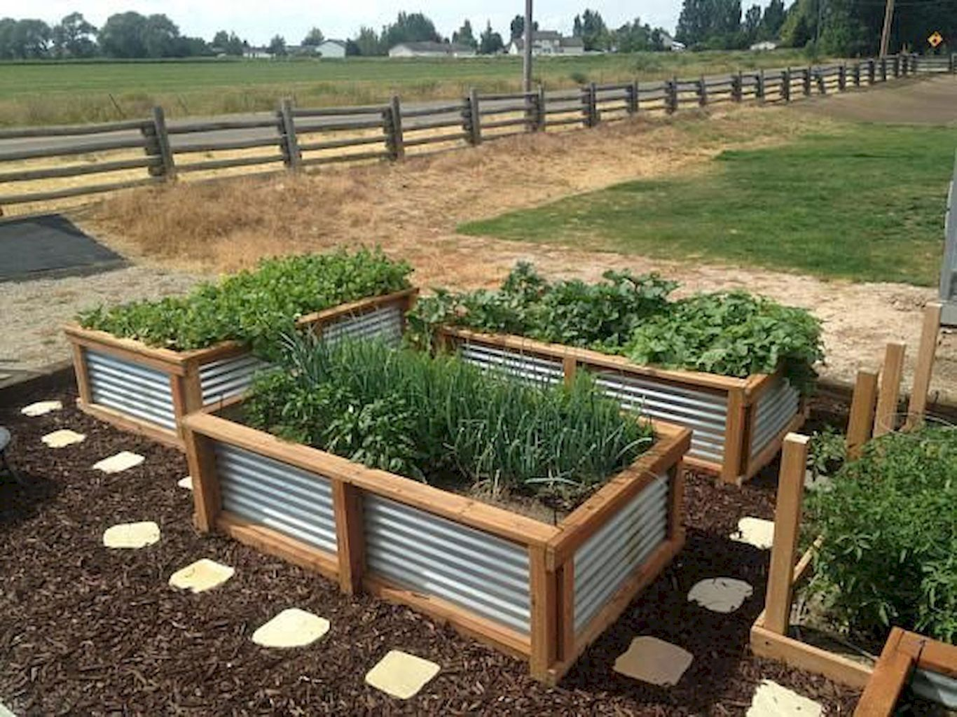 Cool 7 Affordable Backyard Vegetable Garden Design Ideas https