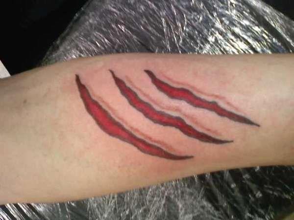 ปักพินในบอร์ด bear paw scratch tattoo  pinterest