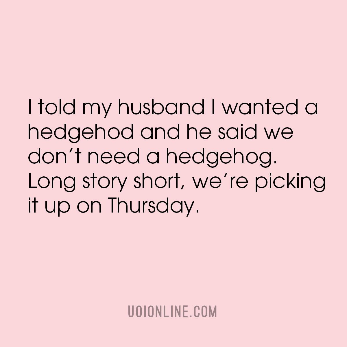 Married Life Funny Quote In 2020 Funny Quotes Favorite Quotes Quotes