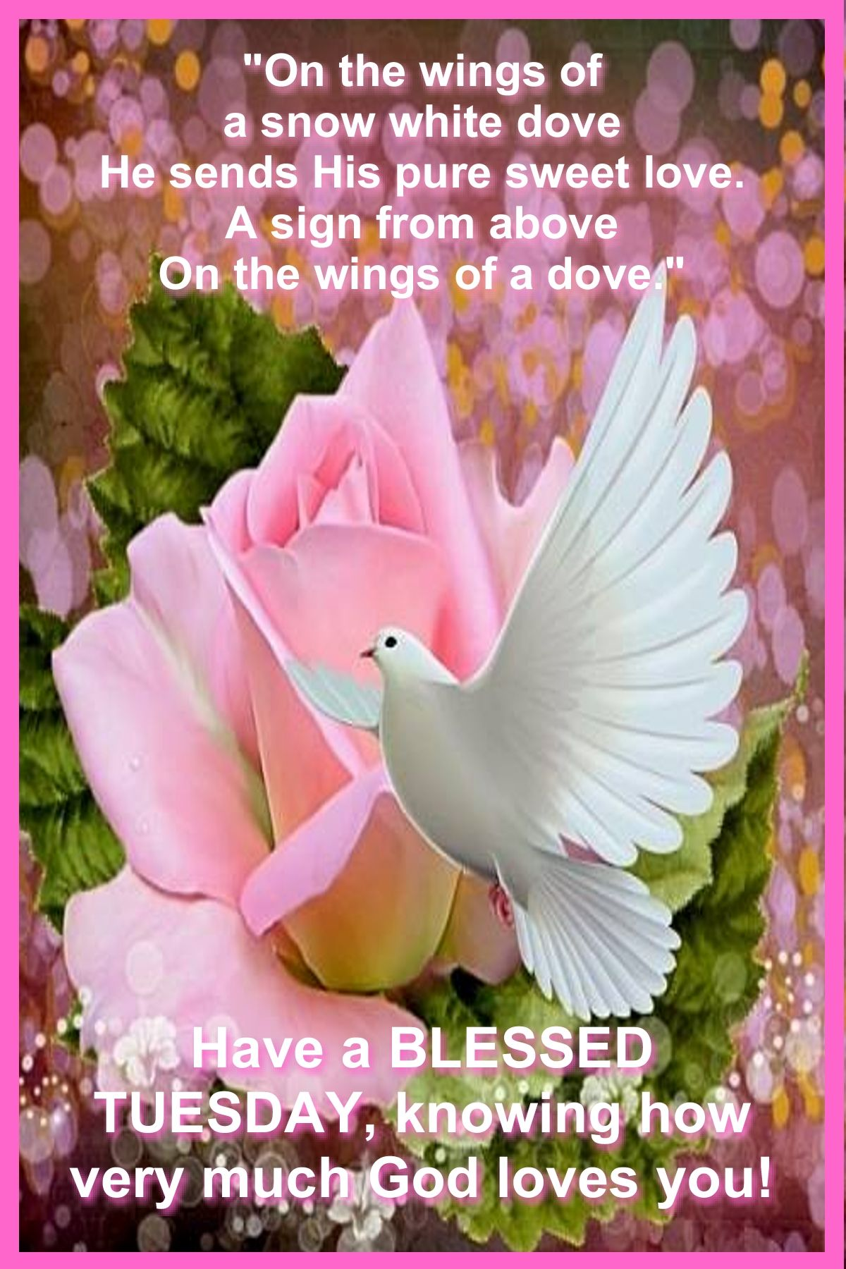 Good Morning Christian Quotes Pinrosa Well On Tuesday Blessings  Pinterest  Tuesday