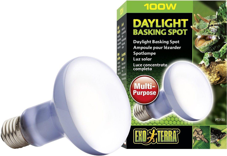 Exo Terra Daylight Basking Reptile Spot Lamp 75 W Bulb Chewy Com Uva Light Heat Lamps Bulb
