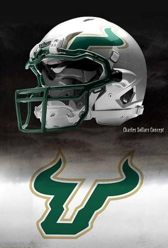 Pin By Unisunn 144 College Football B On Usf University Of South Florida Bulls Football Helmets Bulls Football College Football Helmets