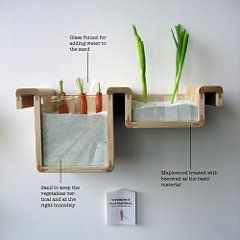 Re-imagine Food Storage and Preservation (Without A Fridge) | Art on GOOD