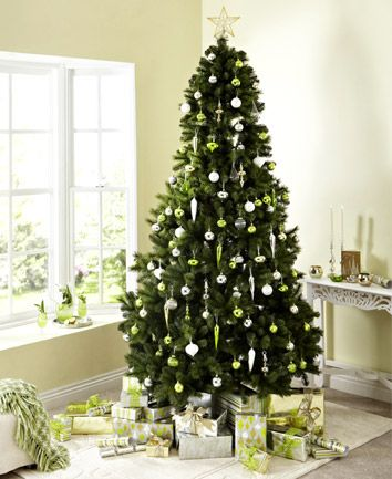 order your balsam or fraser fir clippings miniatures trees on line with hilltop christmas tree httpwwwhilltop christmas treescom - Hilltop Christmas