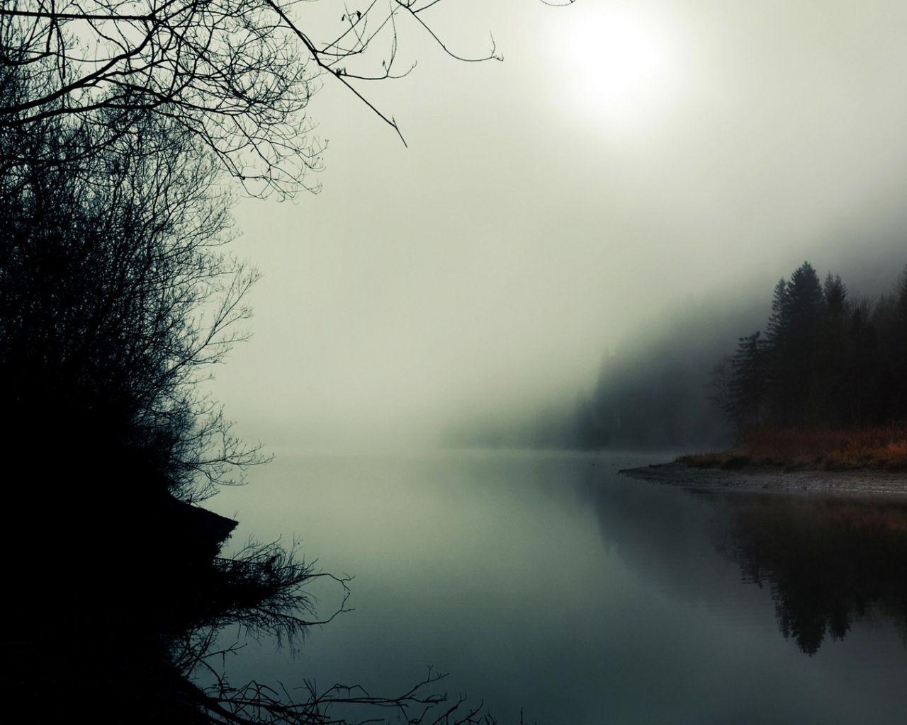 mystical wallpaper 1920x1080 Foggy forest, Scenery