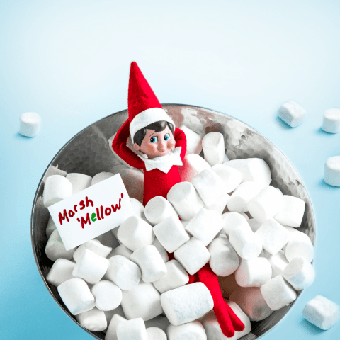 New Free of Charge 42 Elf On The Shelf Ideas Funny Hilarious Classroom Ideas - S...,  #charge... #elfontheshelfideasfunnyhilarious New Free of Charge 42 Elf On The Shelf Ideas Funny Hilarious Classroom Ideas - S...,  #charge #Classroom #Elf #Free #Funny #Hilarious #Ideas #Shelf,New Free of Charge 42 Elf On The Shelf Ideas Funny Hilarious Classroom Ideas - SILAHSILAH.COM Concepts 42 Elf On The Shelf Ideas Funny Hilarious Class...