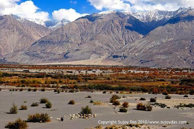 Trekking and  Photography in the Himalaya: Nubra Valley: Dream Camp Sumoor