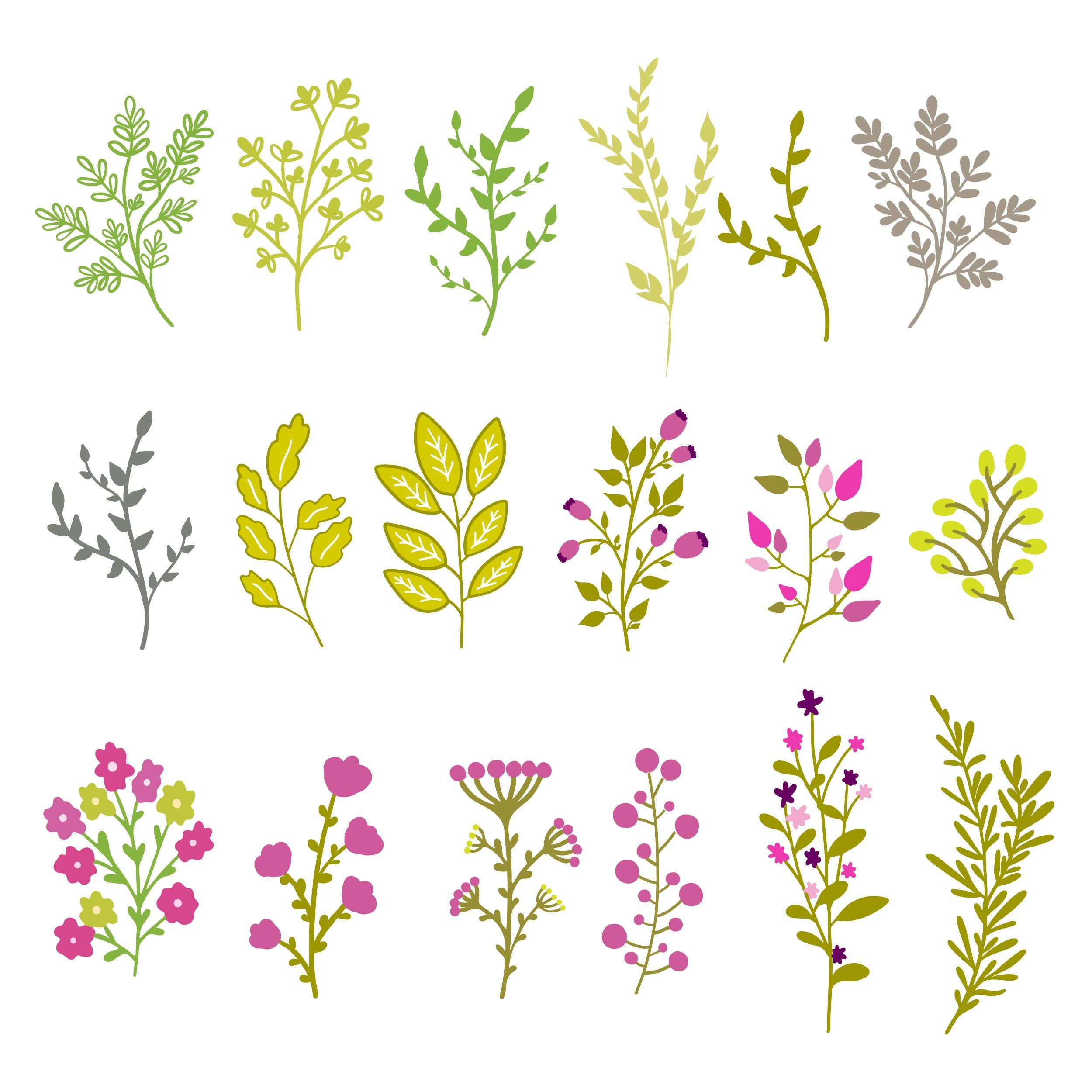 Floral illustrations, vector objects