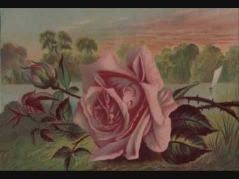 Don Williams ---The Rose