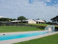 BucketList: Own an equine rehab center that has aquatic therapy.