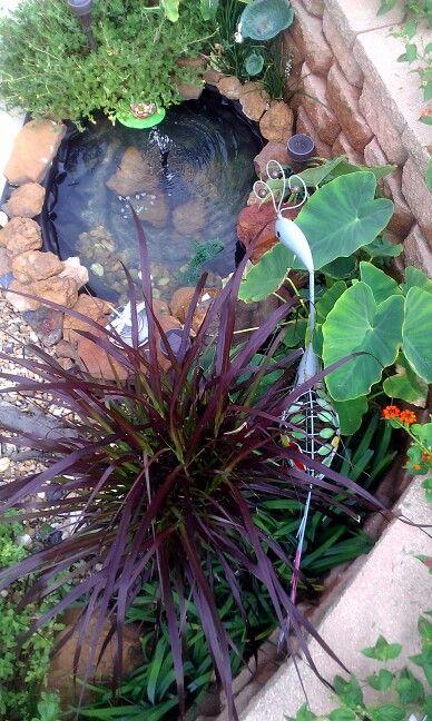 Garden pond / foliage. Love the purple grasses!