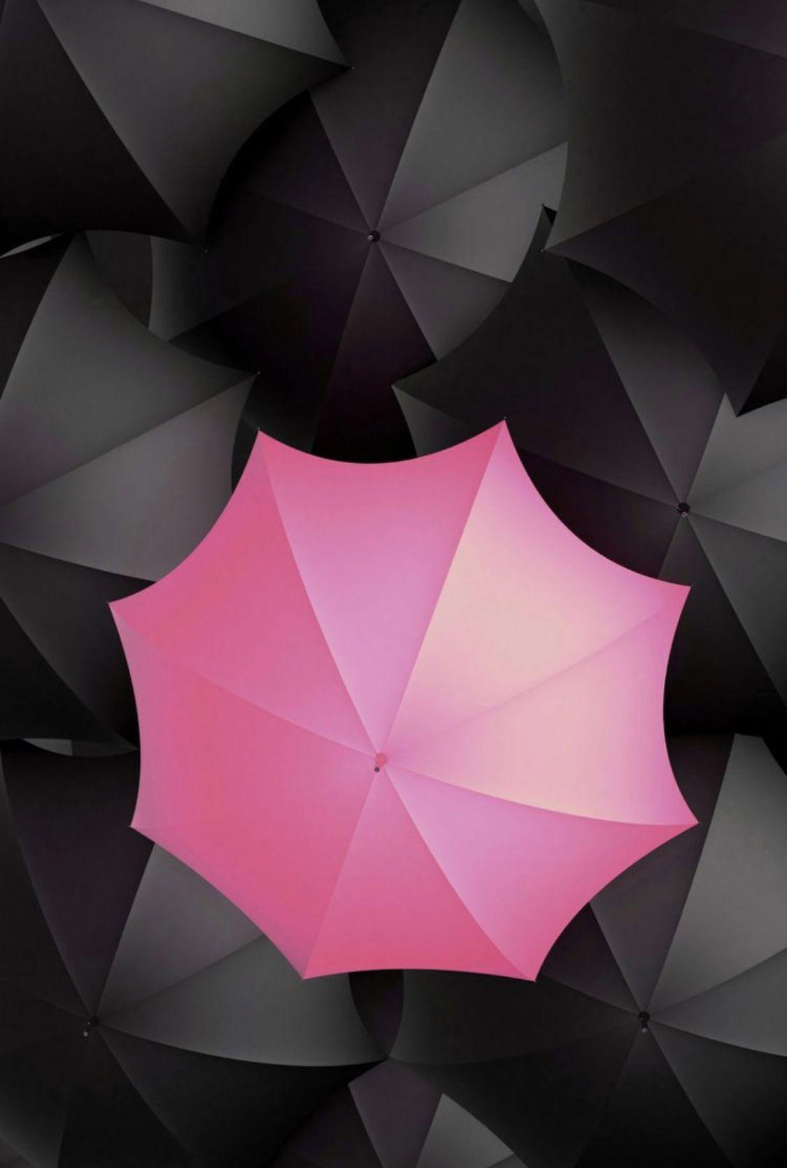 Pink Black Umbrellas Pink And Black Wallpaper Color Splash Photography Pink Umbrella