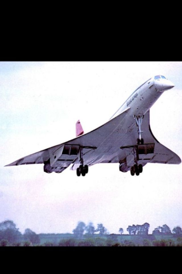 concorde i ll take you under my wing concorde the supersonic
