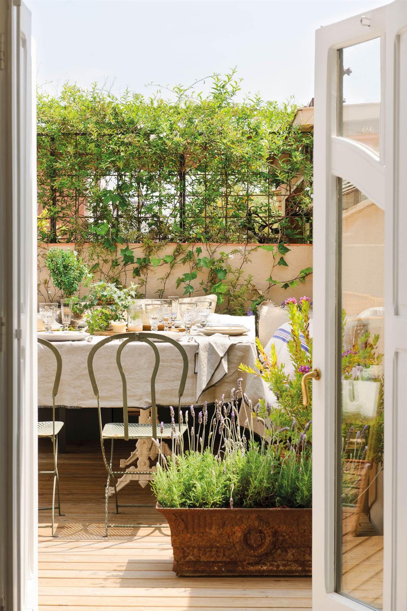 Comedor Exterior Con Muebles Metalicos Y Plantas 00464938 Picnic - Porches-metalicos