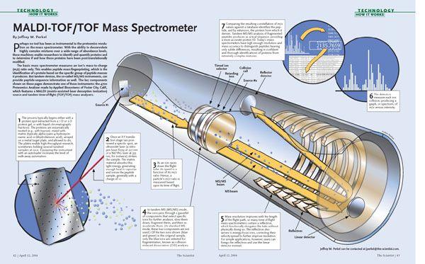 Maldi Tof Mass Spectrometer