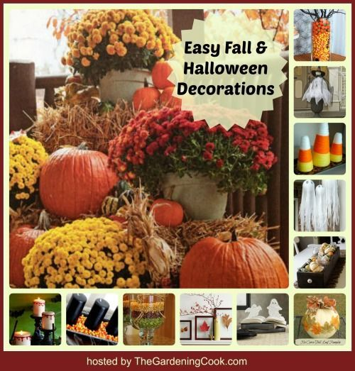 Halloween DIY projects - Quick and Easy Decor Holidays, Halloween - natural halloween decorations