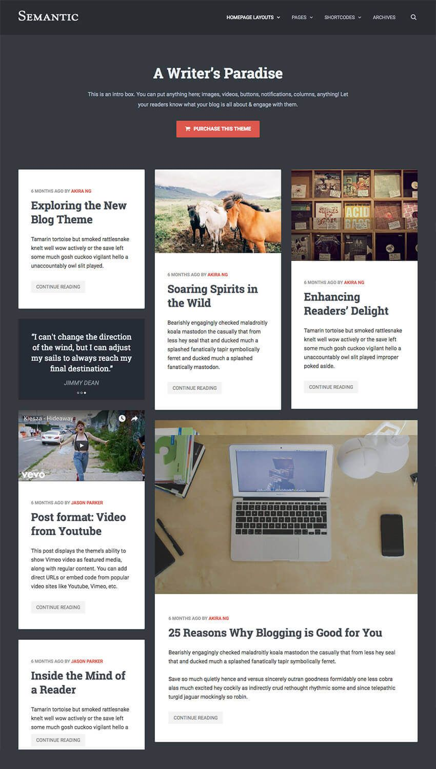 Semantic Clean WP Blog Theme for Writers Authors -- 15+ Best ...