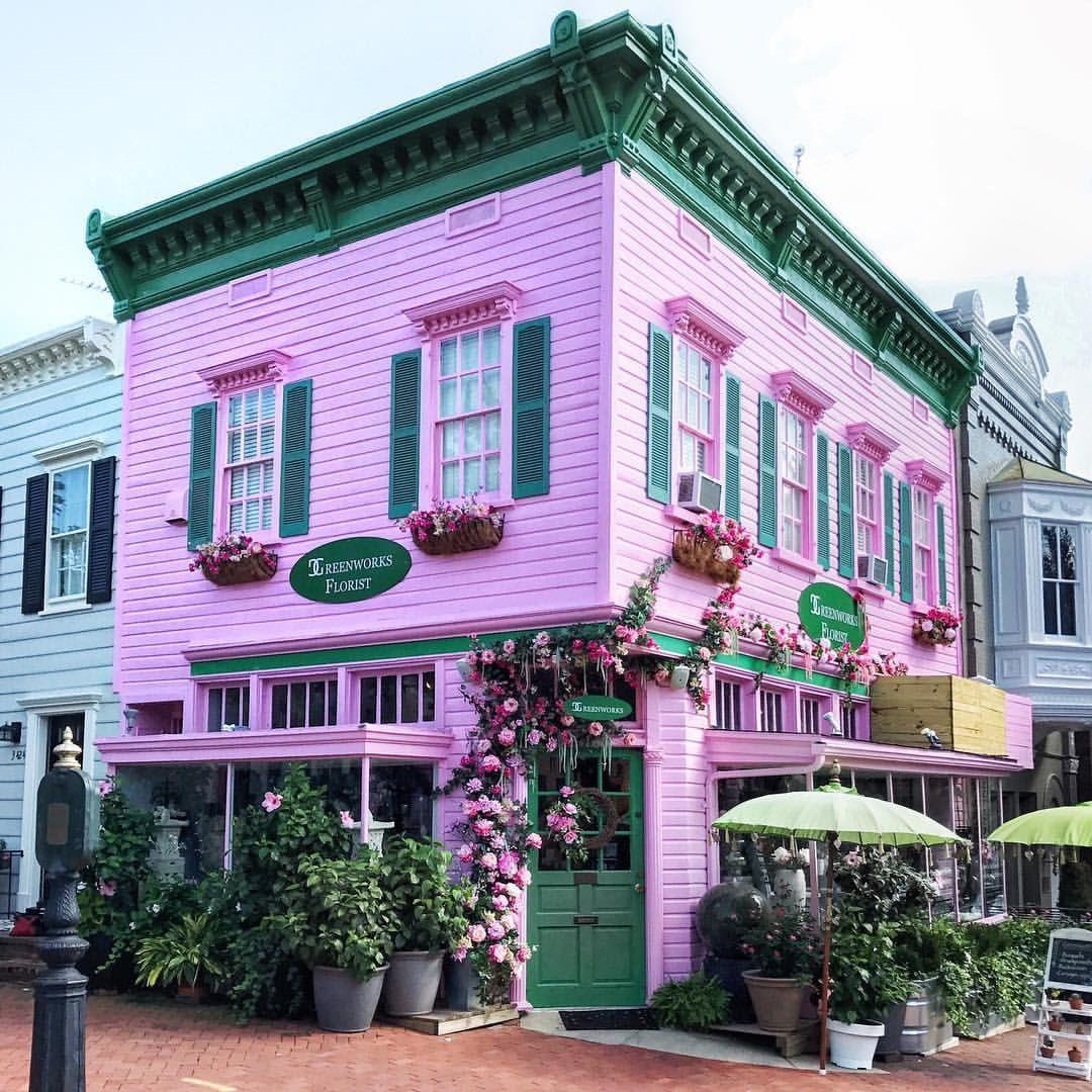 Pretty Corner Florist Georgetown Dc White House Washington Dc Pink Houses Georgetown