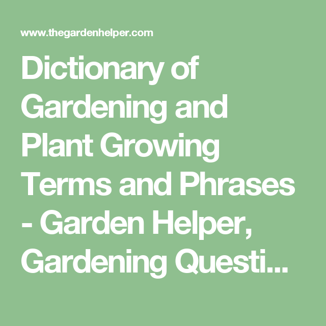 Dictionary Of Gardening And Plant Growing Terms Phrases Garden Helper Questions Answers