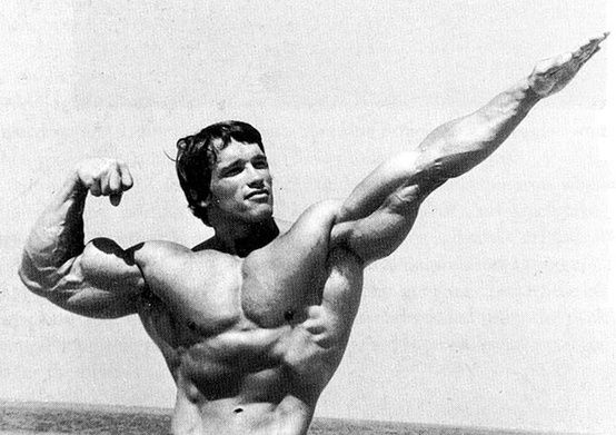 Son of Zeus Muscle Building Pinterest Muscles - fresh arnold blueprint day 11
