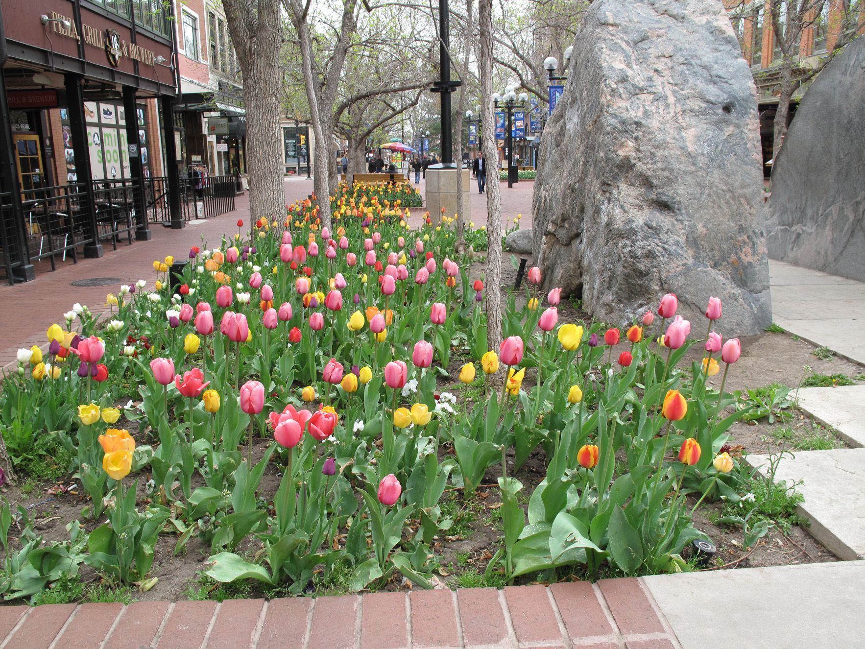 a fun Spring day in Boulder ..... would definitely go back.... and hike in the Flatirons!!