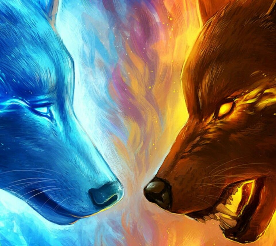 Fire and Ice Wolf Wolves in 2019 Art, Art drawings