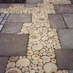 Inspiration For Using Ammonite In The Garden Garden